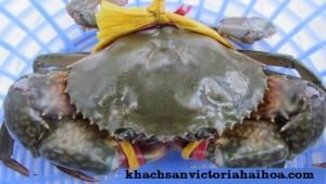 Một số mẹo chọn mua hải sản tươi sống